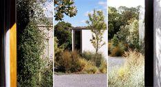 Landscape Structure, Landscape Architecture, Plant Design, Native Plants, Outdoor Structures, Native Gardens, Planting, Landscaping, Plants