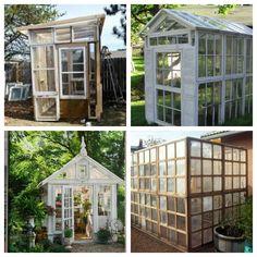 Old window make new greenhouses! #myreplenish