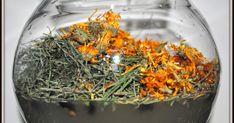 Kombucha, How To Dry Basil, Health, Food, Wax, Health Care, Essen, Meals, Yemek