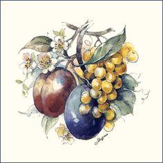 Kitchen Fruits Designs on Decorative Ceramic Tiles