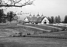 Keeneland Race Track Stables | Lexington, Kentucky | Christina Terrano