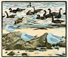 The Wildlife Art Gallery - Robert Greenhalf - Page 2