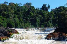 arapahu island suriname - Google zoeken