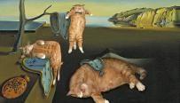Obras de arte felinas, Dalí, gatos.