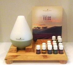 Essential Oil Class Display and Diffuser Stand by OrganizeYourOils A custom one like this but without the info holder and the oils are lined up on different tiered levels.