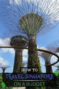 How to Travel Singapore on a Budget | Backpacking Singapore | How to Travel Cheap in Singapore | Where to Stay in Singapore | What to Eat in Singapore | How to Get Around in Singapore | South East Asia Travel Tips | Affordable Travel | Singapore Itinerary Planning | Free Things To Do in Singapore | What to See in Singapore