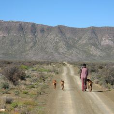 Elin walks the dogs. outside Prince Albert, Western Cape Big Sky Country, Country Roads, Sa Tourism, Prince Albert, Back In Time, Heartland, Countries Of The World, Cape Town, Wonders Of The World