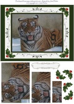 Snow Tiger on Craftsuprint designed by Julie Pilcher - This is my very first design for CUP and is made up from one of my original paintings, the card with pyramid layers and decoupage depicts a tiger resting in the snow, fits on a 8 x 6 card front and includes a blank label (for you to include your own message) that is made to fit over the design on the bottom of the card. This would be a perfect greetings card for any wildlife or animal lover. - Now available for download!