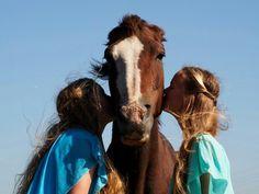 Horse photoshoot C2013 by Jacqueline Herbert