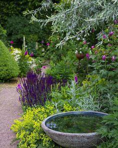 backyard designs – Gardening Ideas, Tips & Techniques Small Gardens, Outdoor Gardens, Cottage Garden Design, Pyrus, Water Features In The Garden, Garden Trellis, Water Garden, Garden Bar, Shade Garden