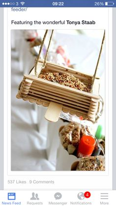 Lolly stick bird feeder