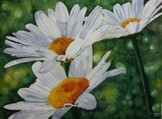 "Daisies-16""x21""-Watercolor on paper"