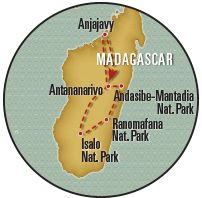 This adventurous Madagascar tour offers an in-depth exploration of the planet's most unique biodiversity hot spot! African Safari, Madagascar, Habitats, Tours, Adventure, Natural, Adventure Game, Adventure Books, Nature