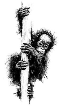 orangutan crayon