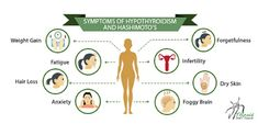 Facebook1Pinterest0TwitterGoogle+0Email1Over the years I've compiled a list of symptoms of hypothyroidism and Hashimoto's with which women often struggle. One important thing to remember is that once you suspect that thyroid...
