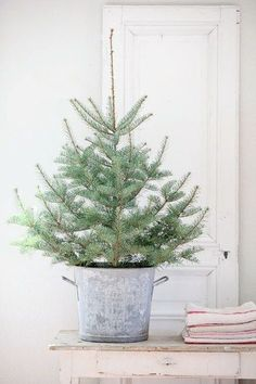 Christmas Tree in metal bucket / simple and easy holiday decor