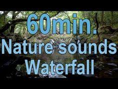 #3..1 Hour Relaxation-Sleep-Study-Water Sounds-1 Heure Détente-Sleep-Étude-l'eau des sons