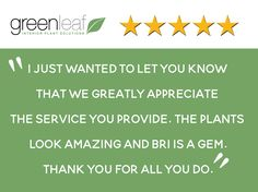 It's always great getting positive feedback. Green Leaf has a great team and we always strive to do our best for our clients. Thanks Action Property Management for taking the time to express your feelings. #indoorplants #interiorplants #plantdesign #plantservice #plantsforworkspace
