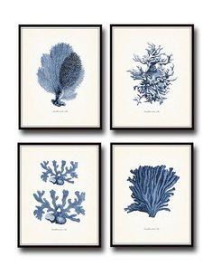 Vintage Indigo bleu mer corail impression Giclee Art n ° 2 - imprimer - Art nautique - Plage Decor - Decor côtières - estampes - affiches - corail