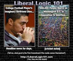 Liberal logic..sick of main stream media