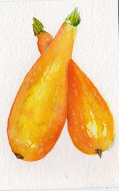 4 x 6 Original Two Squash Painting watercolor by SharonFosterArt, $10.00