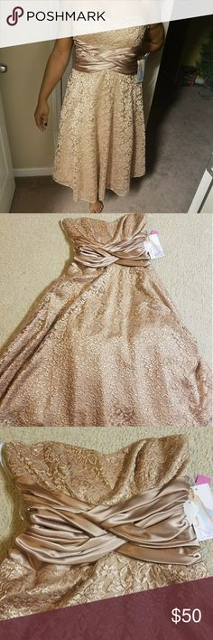 Beautiful Lace Dress NWT Beautiful gold dress that can worn at a holiday party or wedding. This would be the perfect dress for a formal/semi formal occasion. Niki Lavis Dresses Midi