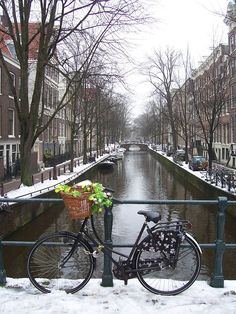 Canals of Amsterdam - um novo objetivo! Tour En Amsterdam, Amsterdam Travel, What A Beautiful World, Beautiful Places, Eurotrip, Great Places, Places To See, Travel Around The World, Around The Worlds