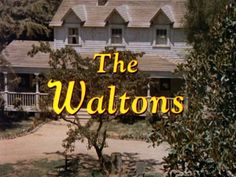 The Waltons - great childhood memories watching this.