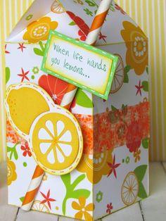 Milk Carton cut file made into a Summertime Treat Box.  Love the paper straw idea!!  @silhouettepins