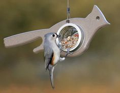 Tiny Mrs. Cardinal jar feeder