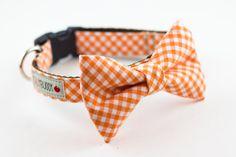 Orange Gingham Bowtie Dog Collar - Apollo needs this