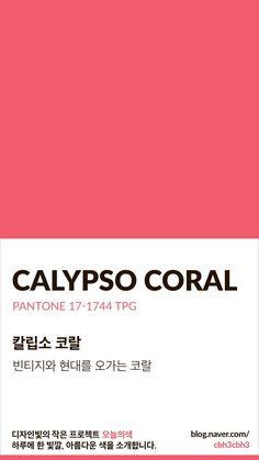 Coral Colour Palette, Pantone Colour Palettes, Pantone Color, Coral Color, Colour Board, Color Swatches, Color Of Life, Color Theory, Color Names