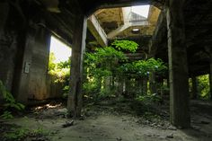 Although built in 1851 as a glass factory, it had to be used as a shipyard during World War II until A abandoned shipyard is located in Nagasaki,Japan. It was demolished 2 years ago! Beautiful Fish, Beautiful Places, Dark City, Natural Scenery, Old Buildings, End Of The World, Abandoned Places, Fish Tank, Les Oeuvres