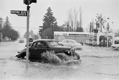 Heavy rain caused flooding at the intersection of Ventura Boulevard and Woodman Avenue in March 1952.