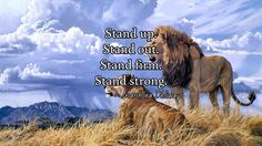 Stand up. Stand out. Stand firm. Stand strong.   / ~ Matshona Dhliwayo