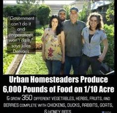Urban Homesteaders - city dwellers living like folks off the grid. Inspiring stories. Homesteading is located not in the country or the wilderness but in your heart. Lots of useful information here