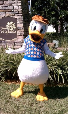 Donald Duck - children's miracle golf outing
