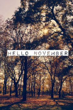 Image about autumn in hello seasons ❄️? by Sally? Shared by Sally? Find images and videos about autumn, fall and hello on We Heart It - the app to get lost in what you love. November Tumblr, November Quotes, November Pictures, November Images, November Backgrounds, November Wallpaper, November Month, Hello September, Sweet November