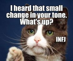 Intj And Infj, Infj Mbti, Infj Type, Infj Traits, Esfj, Myers Briggs Personality Types, Infj Personality, Infj Problems, Thing 1