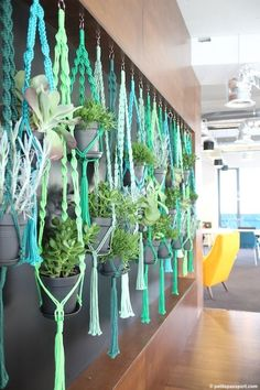 the student hotel amsterdam - hanging macrame planters -- love these! Updated and fresh. Macrame Plant Hanger Diy, Macreme Plant Hanger, Crochet Plant Hanger, Rope Plant Hanger, Hanging Plant Wall, Diy Hanging Planter, Planter Ideas, Window Hanging, Hanging Pots