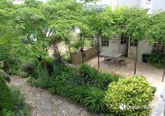 Adorable maison en pierres centre ville Acre, Centre, Green, Plants, Gardens, Courtyard Gardens, Yard, Stones, City