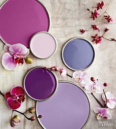 Composed of red-tinted and blue-shaded purples, this scheme combines a flower's most vivid hues with its softest tones. Use the perennially pleasing palette, which includes fuchsia, orchid, hibiscus, mauve, and magenta, to cultivate distinctive designs.