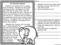 Animals on the Loose!  Set #1 - Read, locate text evidence, and write answers.  Use matching graphic organizers to identify key facts and then use those facts to write!  Keeps the kids engaged!  Grades 1-3
