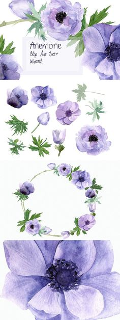 Anemone Watercolor Clip Art + Wreath. Objects. $4.00 Floral Wreath Watercolor, Watercolor Wedding, Watercolor Cards, Watercolor Illustration, Watercolor Flowers, Watercolor Tattoo, Watercolor Paintings, Watercolour, Flores Roxas