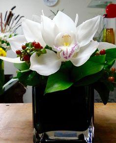 Galería Floral, Mansiones del Valle, Querétaro, | Imágenes