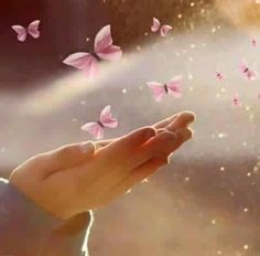 Go be beautiful Butterfly Kisses, Butterfly Art, Beautiful Hands, Beautiful Images, Beautiful Children, Beautiful Butterflies, Beautiful Flowers, Butterfly Wallpaper, Jolie Photo