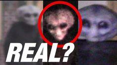 are aliens real persuasive essay