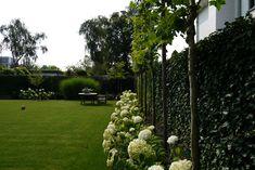 onderhoudsvriendelijk groene tuin
