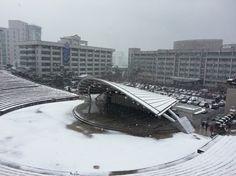 한양대학교 노천극장 설경, 눈오는날 : Snowing Outdoor theater, Hanyang University, Seoul, Korea