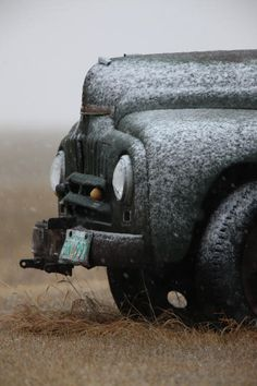 beautifully mottled vintage truck